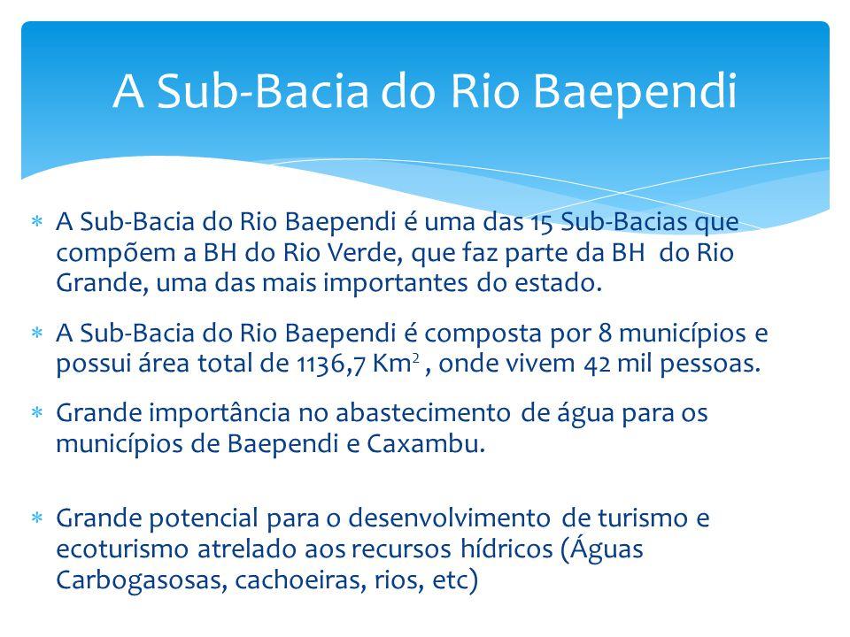 A Sub-Bacia do Rio Baependi é uma das 15 Sub-Bacias que compõem a BH do Rio Verde, que faz parte da BH do Rio Grande, uma das mais importantes do esta