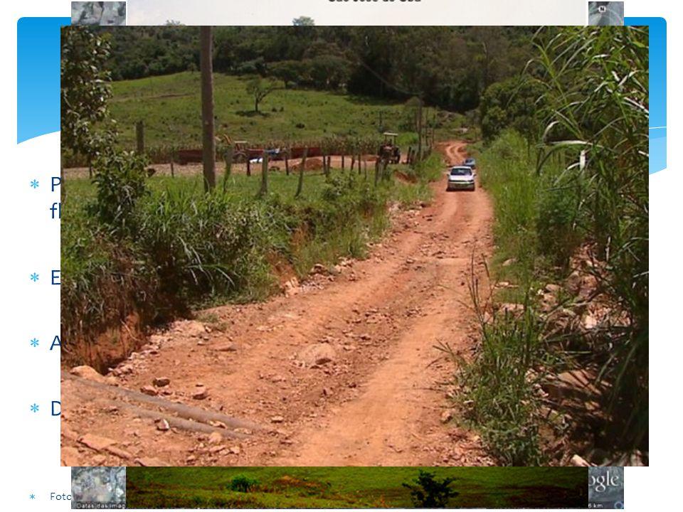 Problemas Pastagens degradadas e fragmentação dos remanescentes florestais Estradas de terra inadequadas gerando muitos sedimentos Aterro Sanitário em