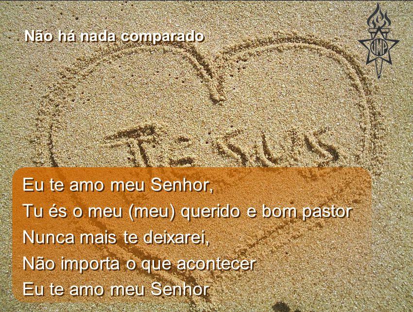 Eu te amo meu Senhor, Tu és o meu pastor A minha vida entrego em tuas mãos ó Deus Eu te amo meu Senhor (3x) Eu te amo meu Senhor, Tu és o meu pastor A minha vida entrego em tuas mãos ó Deus Eu te amo meu Senhor (3x) Não há nada comparado