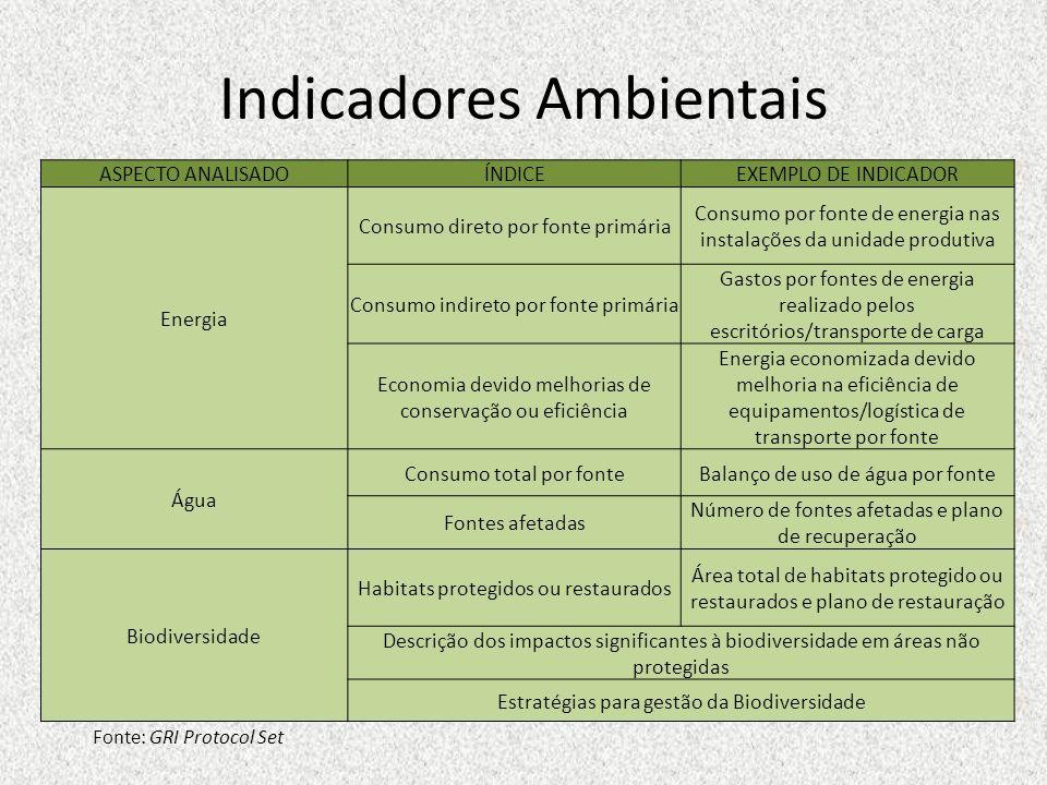 Indicadores Ambientais Fonte: GRI Protocol Set ASPECTO ANALISADOÍNDICEEXEMPLO DE INDICADOR Energia Consumo direto por fonte primária Consumo por fonte