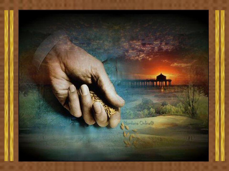 Caríssimos, Quando falamos em tesouro, pensamos logo em riqueza, em bens materiais.