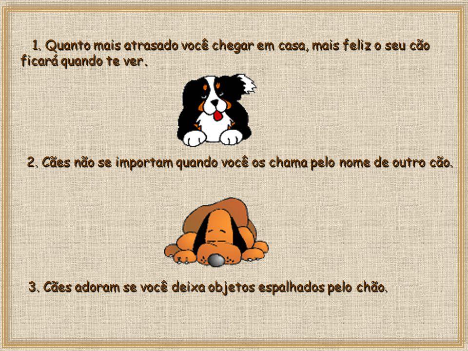 15 vantagens de um cão em relação às esposas 15 vantagens de um cão em relação às esposas neydecastello@uol.com.br