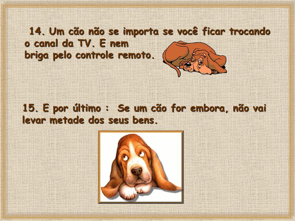 14.Um cão não se importa se você ficar trocando o canal da TV.