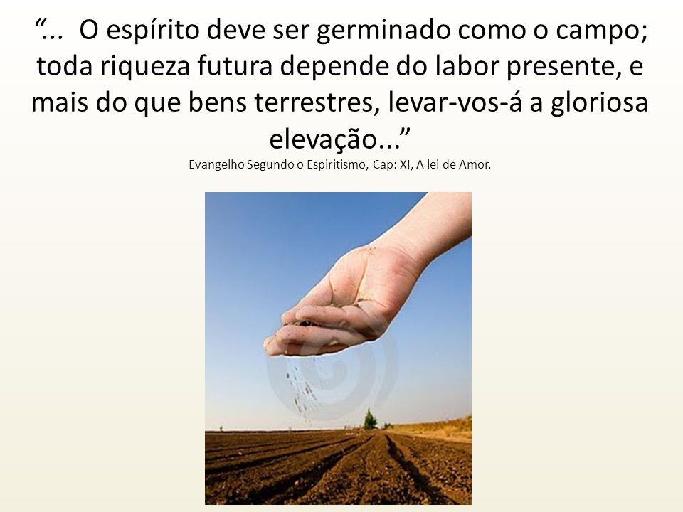 ... O espírito deve ser germinado como o campo; toda riqueza futura depende do labor presente, e mais do que bens terrestres, levar-vos-á a gloriosa e