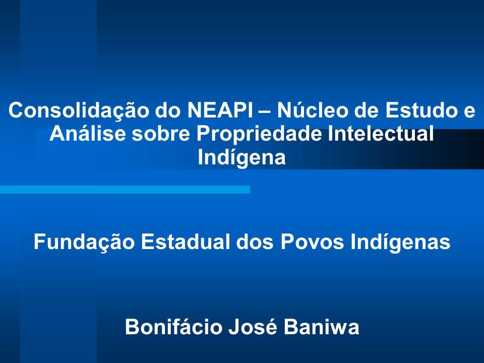 Consolidação do NEAPI – Núcleo de Estudo e Análise sobre Propriedade Intelectual Indígena Fundação Estadual dos Povos Indígenas Bonifácio José Baniwa