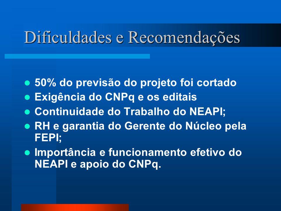 Dificuldades e Recomendações 50% do previsão do projeto foi cortado Exigência do CNPq e os editais Continuidade do Trabalho do NEAPI; RH e garantia do