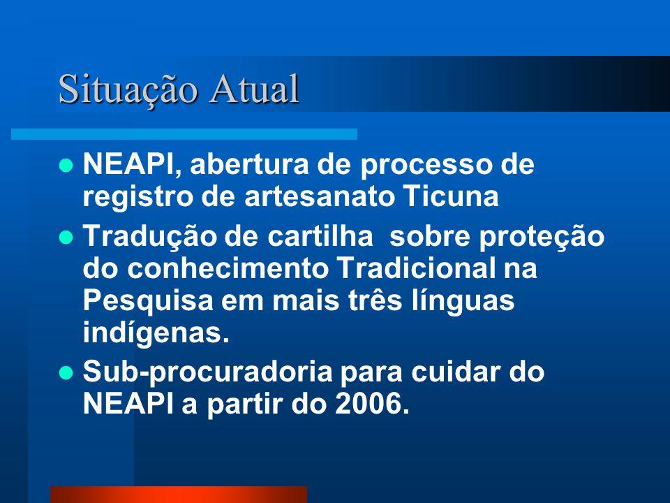 Situação Atual NEAPI, abertura de processo de registro de artesanato Ticuna Tradução de cartilha sobre proteção do conhecimento Tradicional na Pesquis