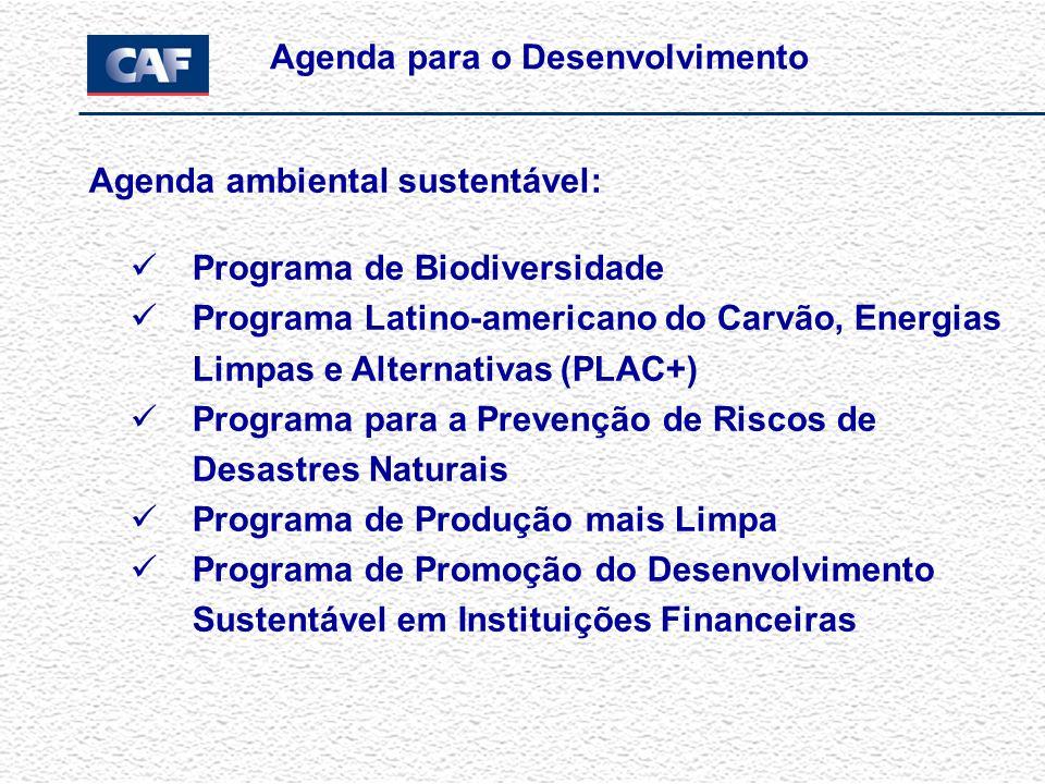 Agenda ambiental sustentável: Programa de Biodiversidade Programa Latino-americano do Carvão, Energias Limpas e Alternativas (PLAC+) Programa para a Prevenção de Riscos de Desastres Naturais Programa de Produção mais Limpa Programa de Promoção do Desenvolvimento Sustentável em Instituições Financeiras Agenda para o Desenvolvimento