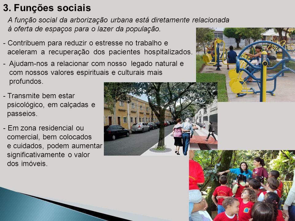 3. Funções sociais A função social da arborização urbana está diretamente relacionada à oferta de espaços para o lazer da população. - Contribuem para