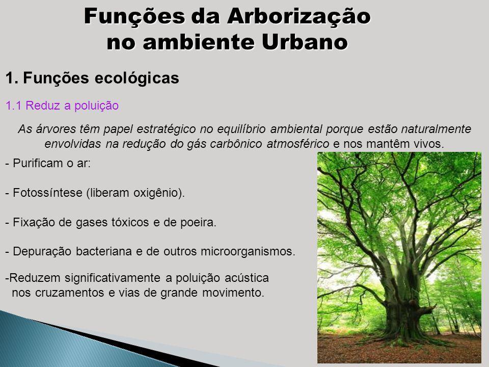 Funções da Arborização no ambiente Urbano -Reduzem significativamente a poluição acústica nos cruzamentos e vias de grande movimento. 1. Funções ecoló