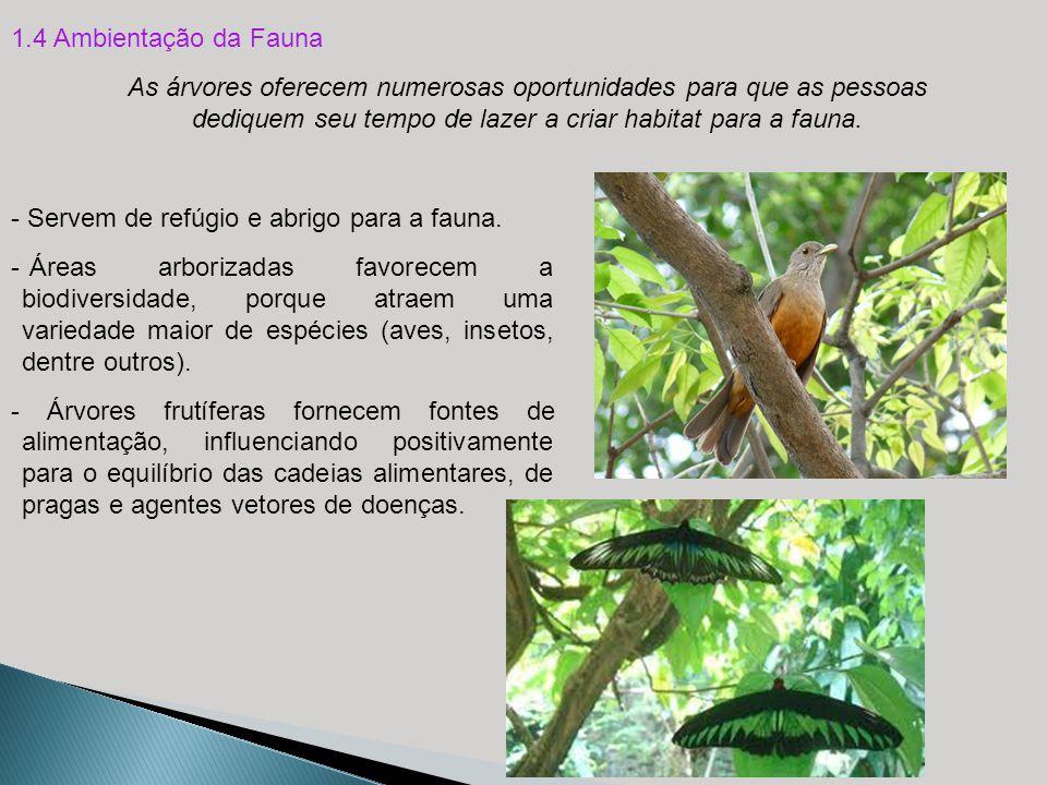 1.4 Ambientação da Fauna - Servem de refúgio e abrigo para a fauna. As árvores oferecem numerosas oportunidades para que as pessoas dediquem seu tempo