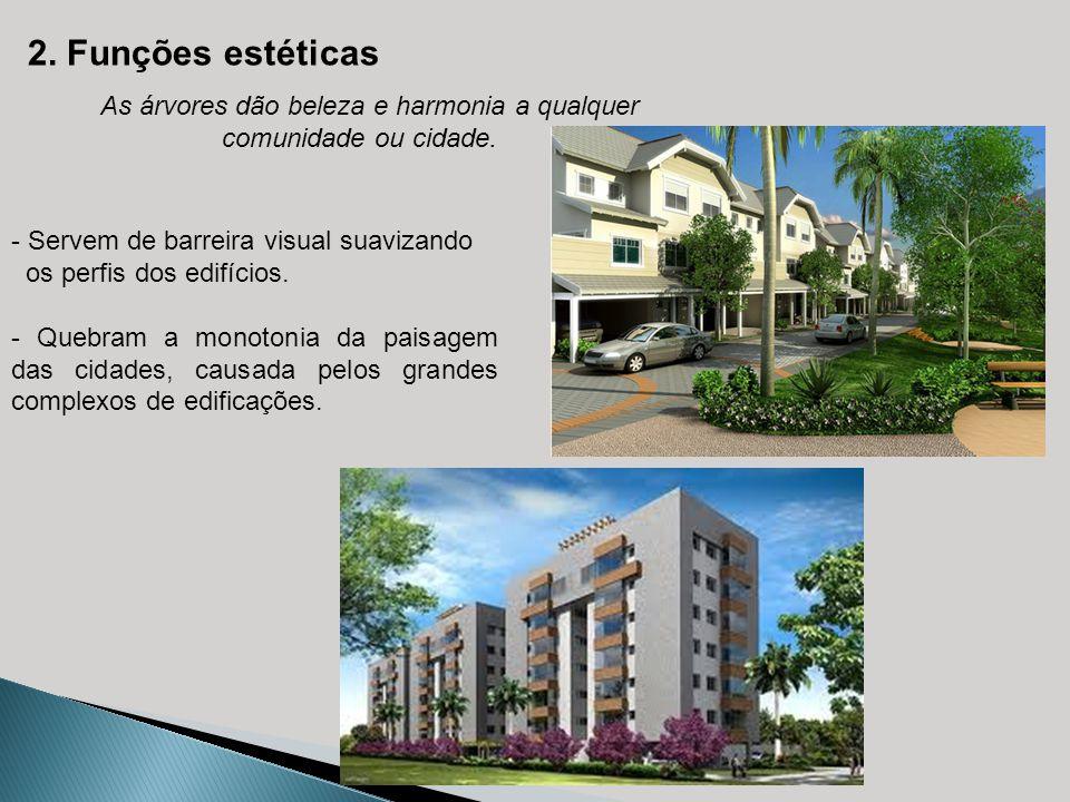 2. Funções estéticas As árvores dão beleza e harmonia a qualquer comunidade ou cidade. - Servem de barreira visual suavizando os perfis dos edifícios.