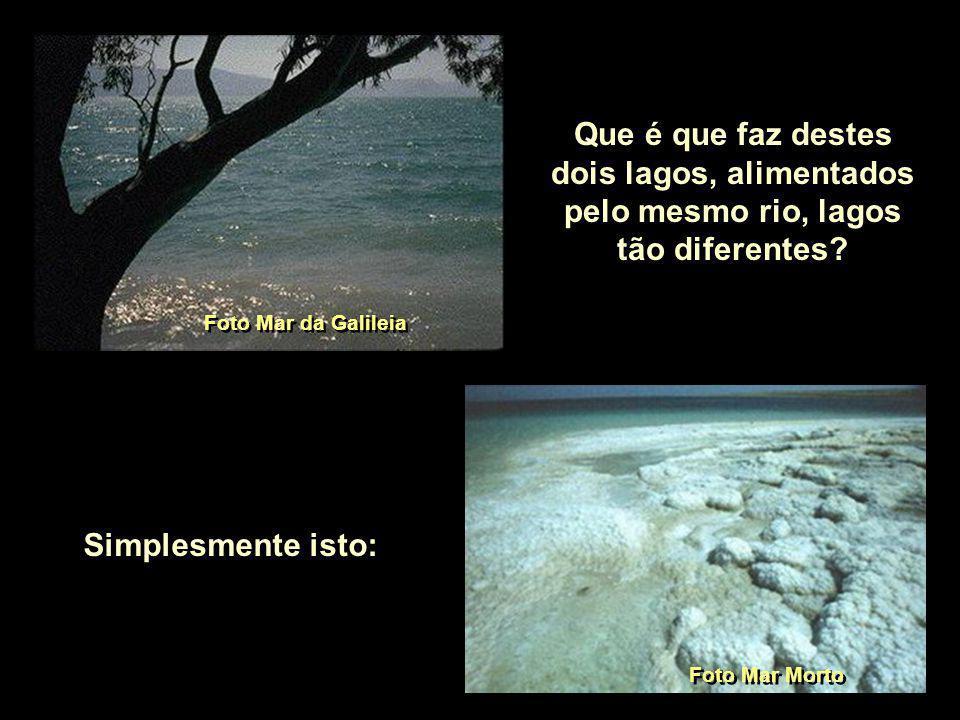 Que é que faz destes dois lagos, alimentados pelo mesmo rio, lagos tão diferentes.
