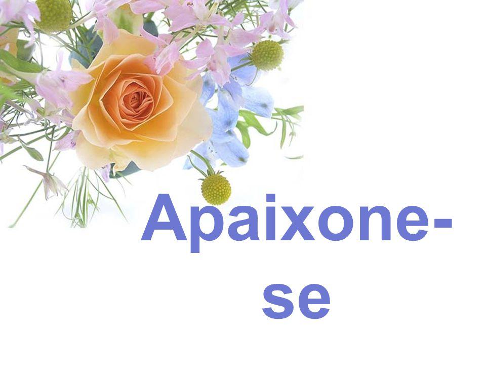 Créditos: Equipe de Redação do Momento Espírita www.momento.com.br Formatação: www.yasminrs.com Imagem: www.comteche.com