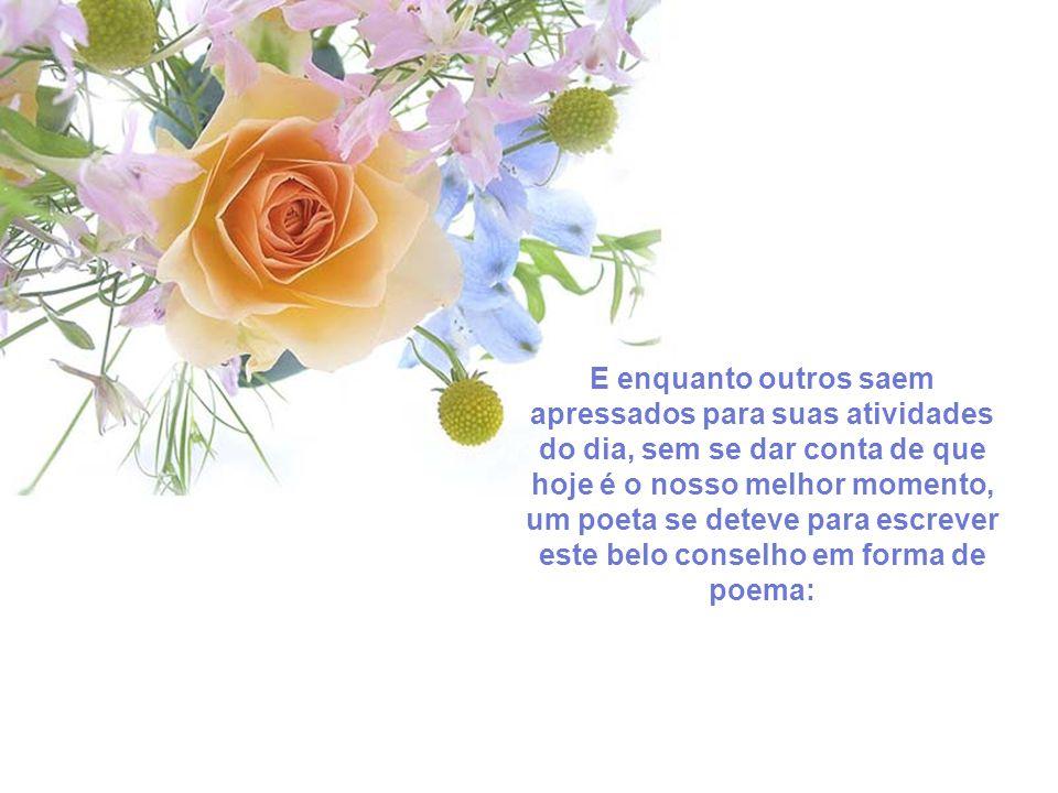 E enquanto outros saem apressados para suas atividades do dia, sem se dar conta de que hoje é o nosso melhor momento, um poeta se deteve para escrever este belo conselho em forma de poema: