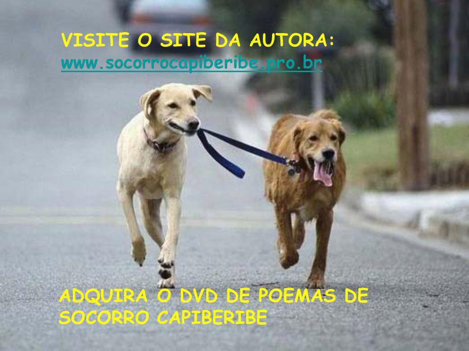 VISITE O SITE DA AUTORA: www.socorrocapiberibe.pro.br ADQUIRA O DVD DE POEMAS DE SOCORRO CAPIBERIBE