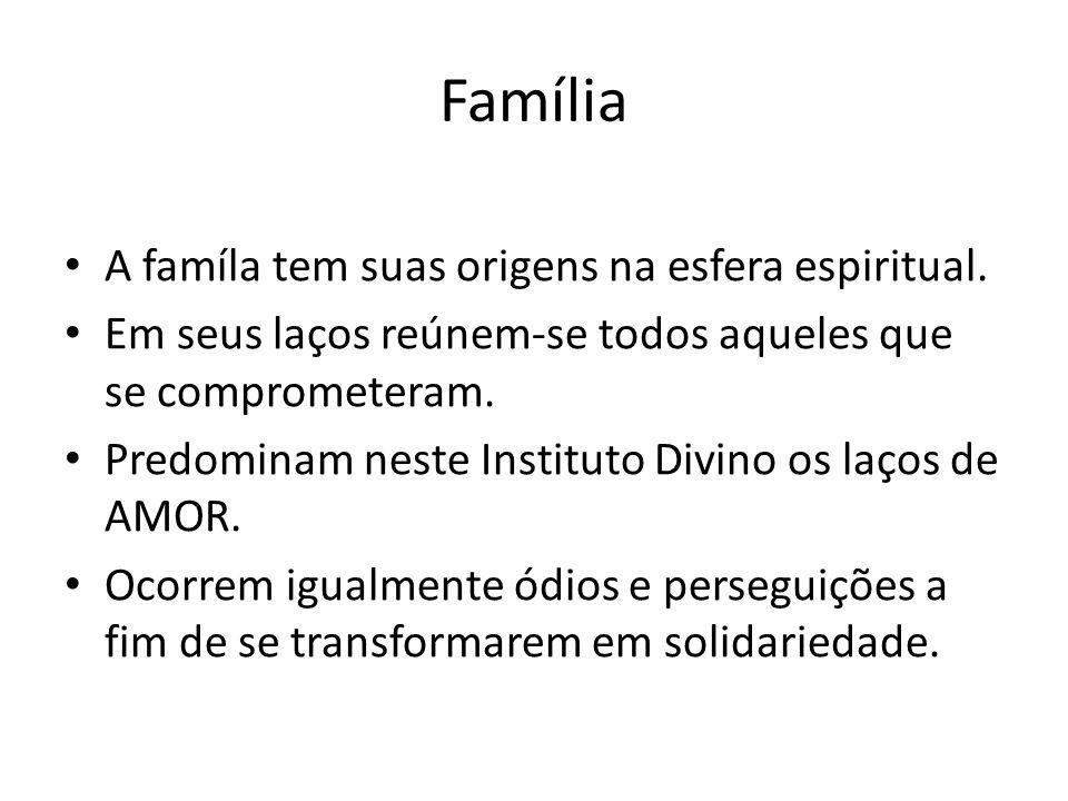 Família A famíla tem suas origens na esfera espiritual. Em seus laços reúnem-se todos aqueles que se comprometeram. Predominam neste Instituto Divino