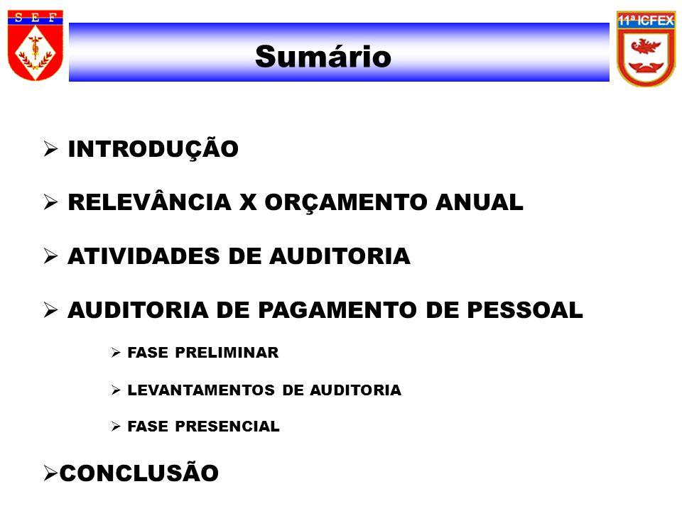 Sumário INTRODUÇÃO RELEVÂNCIA X ORÇAMENTO ANUAL ATIVIDADES DE AUDITORIA AUDITORIA DE PAGAMENTO DE PESSOAL FASE PRELIMINAR LEVANTAMENTOS DE AUDITORIA FASE PRESENCIAL CONCLUSÃO