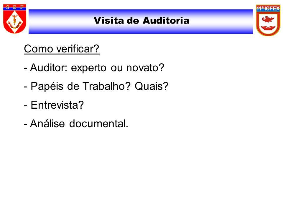 Visita de Auditoria Como verificar? - Auditor: experto ou novato? - Papéis de Trabalho? Quais? - Entrevista? - Análise documental.