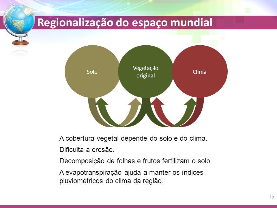 Regionalização do espaço mundial Solo A cobertura vegetal depende do solo e do clima. Dificulta a erosão. Decomposição de folhas e frutos fertilizam o