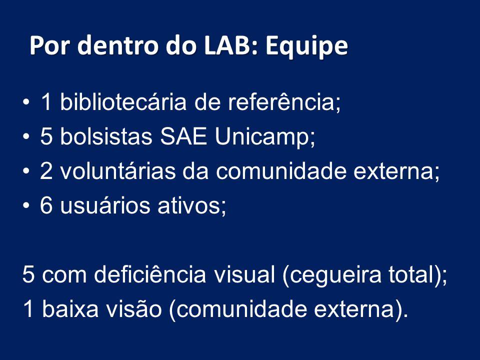 Por dentro do LAB: Equipe 1 bibliotecária de referência; 5 bolsistas SAE Unicamp; 2 voluntárias da comunidade externa; 6 usuários ativos; 5 com defici