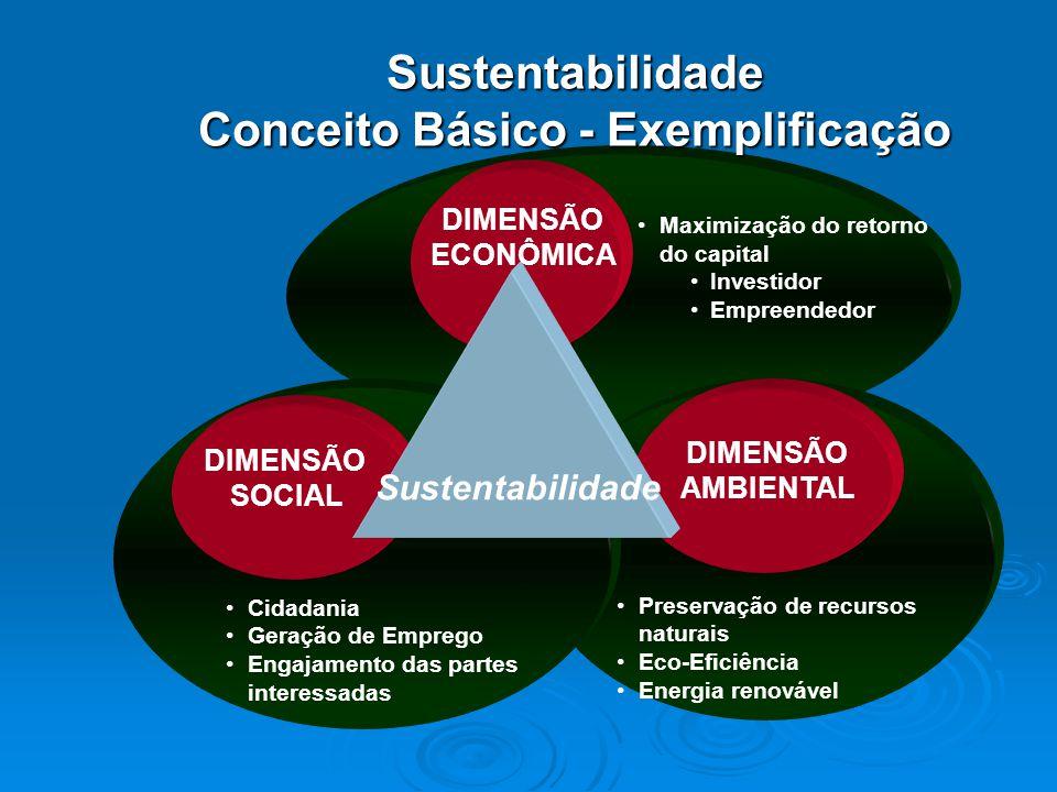 Maximização do retorno do capital Investidor Empreendedor Preservação de recursos naturais Eco-Eficiência Energia renovável Cidadania Geração de Emprego Engajamento das partes interessadas DIMENSÃO ECONÔMICA DIMENSÃO AMBIENTAL DIMENSÃO SOCIAL Sustentabilidade Sustentabilidade Conceito Básico - Exemplificação