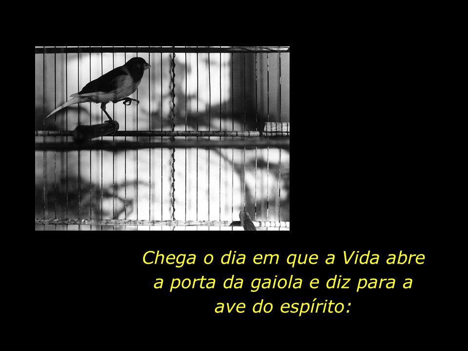 O nosso corpo físico assemelha-se a uma gaiola, e a nossa alma, a uma ave.