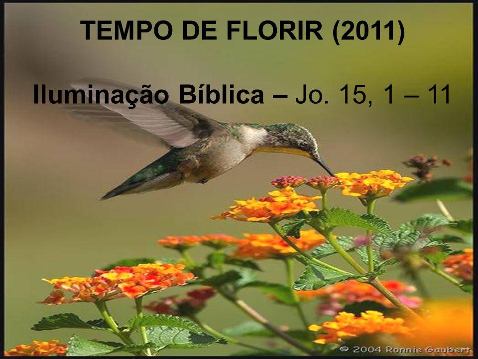 TEMPO DE FLORIR (2011) Iluminação Bíblica – Jo. 15, 1 – 11