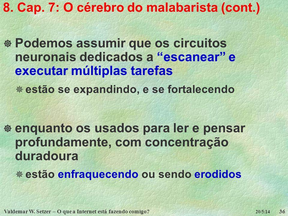 Valdemar W. Setzer – O que a Internet está fazendo comigo?36 20/5/14 8. Cap. 7: O cérebro do malabarista (cont.) Podemos assumir que os circuitos neur