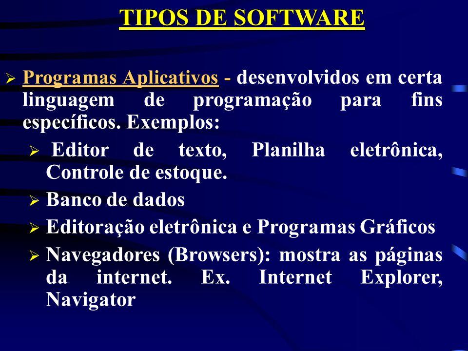 TIPOS DE SOFTWARE Sistema Operacional - Sistema Operacional - é responsável pela comunicação homem-computador. Ex: DOS e Windows Linguagens de Program