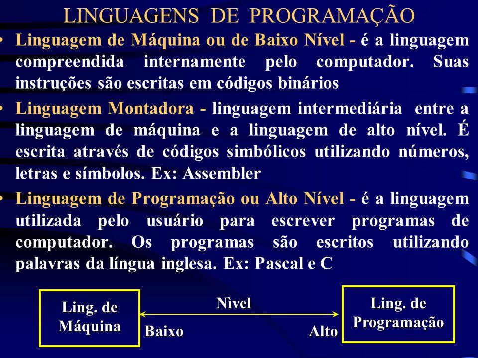 TIPOS DE SOFTWARE Programas Aplicativos - Programas Aplicativos - desenvolvidos em certa linguagem de programação para fins específicos. Exemplos: Edi