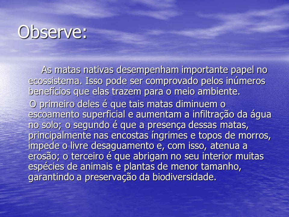 Percurso do raciocínio: Afirmação da importância das matas nativas para o ecossistema.