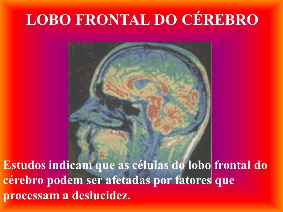 LOBO FRONTAL DO CÉREBRO Estudos indicam que as células do lobo frontal do cérebro podem ser afetadas por fatores que processam a deslucidez.