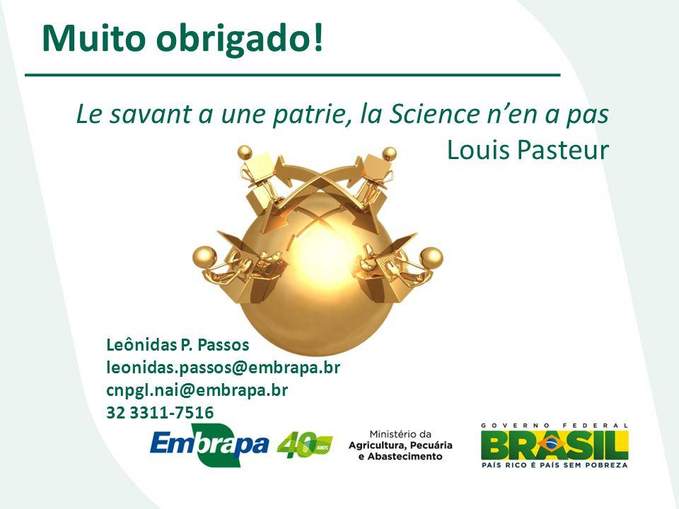 Muito obrigado! Le savant a une patrie, la Science nen a pas Louis Pasteur Leônidas P. Passos leonidas.passos@embrapa.br cnpgl.nai@embrapa.br 32 3311-