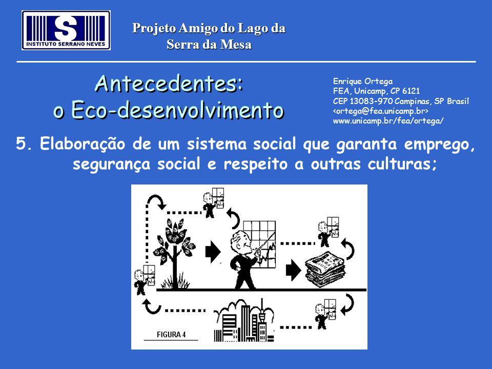 Projeto Amigo do Lago da Serra da Mesa Antecedentes: o Eco-desenvolvimento Antecedentes: o Eco-desenvolvimento Enrique Ortega FEA, Unicamp, CP 6121 CE