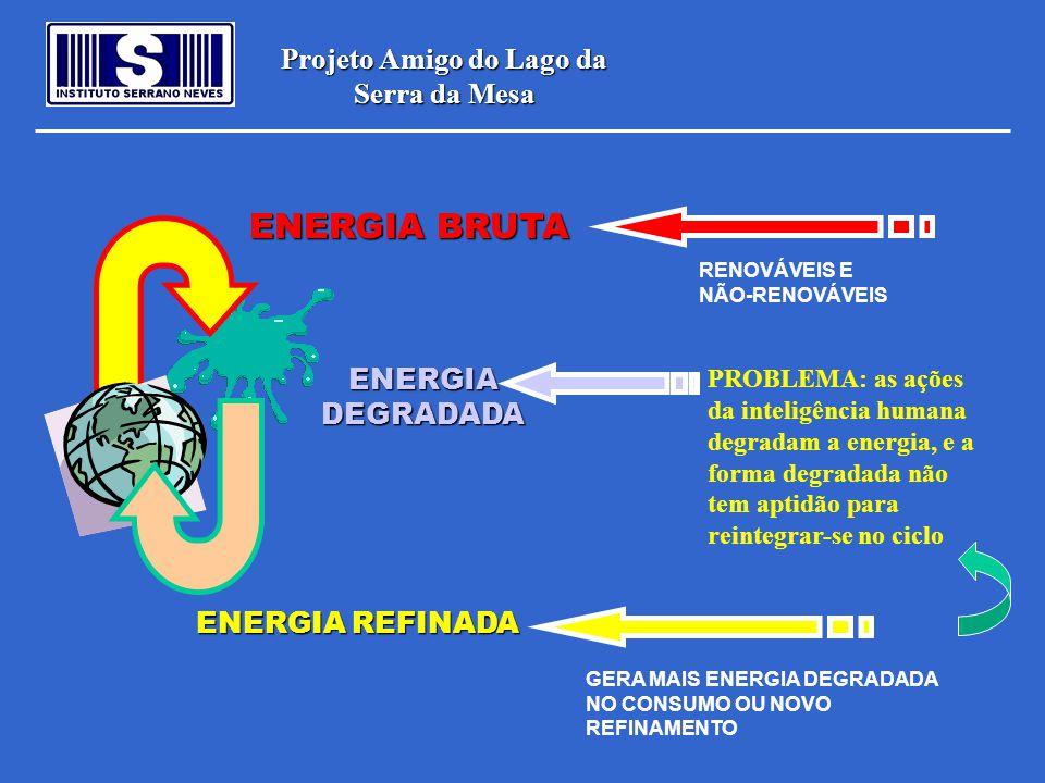 Projeto Amigo do Lago da Serra da Mesa ENERGIA BRUTA RENOVÁVEIS E NÃO-RENOVÁVEIS ENERGIA REFINADA GERA MAIS ENERGIA DEGRADADA NO CONSUMO OU NOVO REFIN