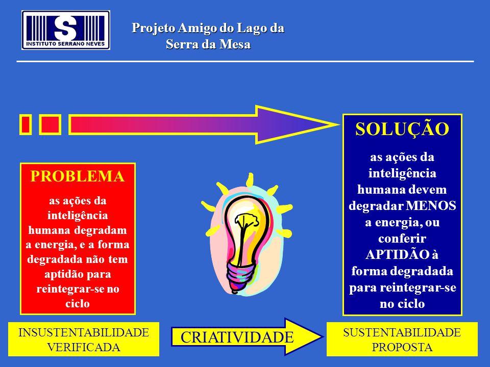 Projeto Amigo do Lago da Serra da Mesa PROBLEMA as ações da inteligência humana degradam a energia, e a forma degradada não tem aptidão para reintegra
