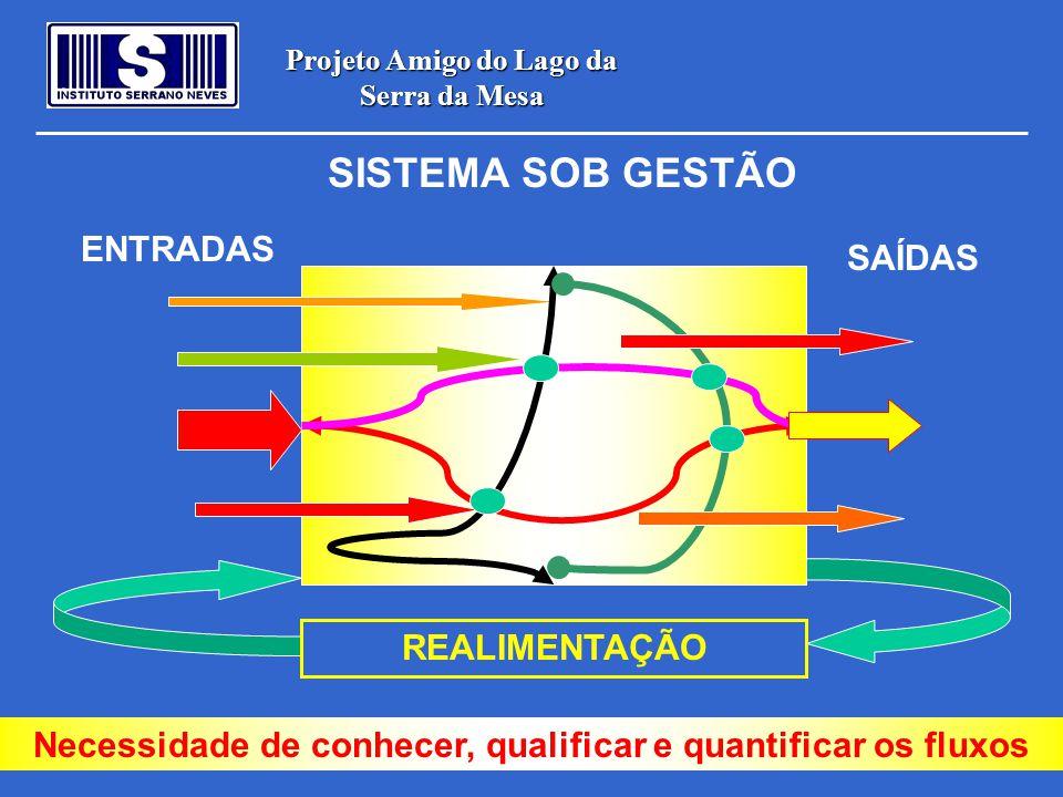 Projeto Amigo do Lago da Serra da Mesa ENTRADAS SAÍDAS REALIMENTAÇÃO SISTEMA SOB GESTÃO Necessidade de conhecer, qualificar e quantificar os fluxos