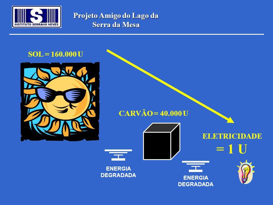 Projeto Amigo do Lago da Serra da Mesa SOL = 160.000 U CARVÃO = 40.000 U ELETRICIDADE = 1 U ENERGIA DEGRADADA