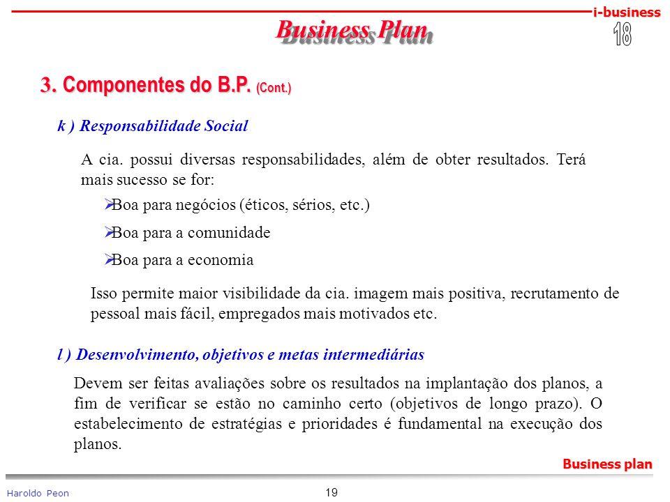 i-business Haroldo Peon Business plan 19 Business Plan Business Plan 3. Componentes do B.P. (Cont.) 3. Componentes do B.P. (Cont.) k ) Responsabilidad