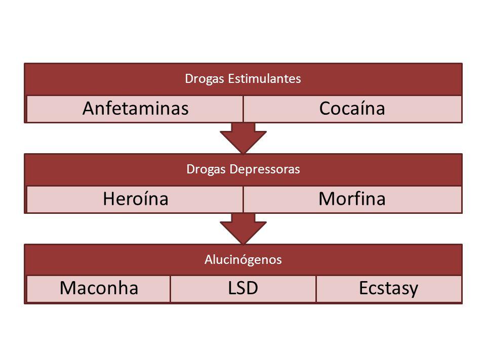 Alucinógenos MaconhaLSDEcstasy Drogas Depressoras HeroínaMorfina Drogas Estimulantes AnfetaminasCocaína