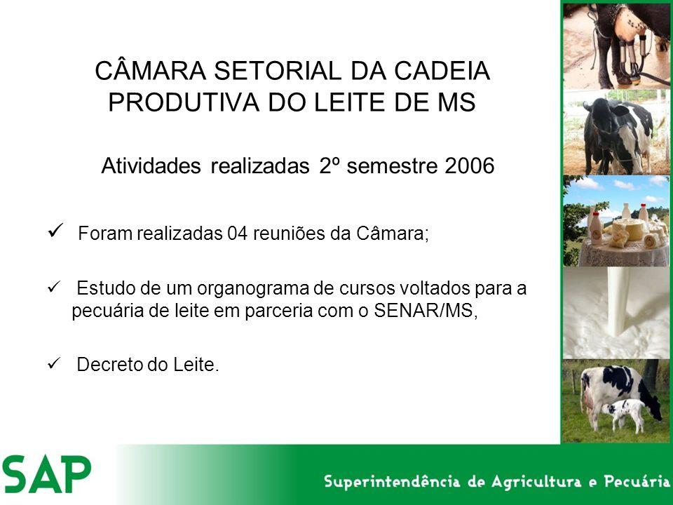 CÂMARA SETORIAL DA CADEIA PRODUTIVA DO LEITE DE MS Atividades realizadas 2º semestre 2006 Foram realizadas 04 reuniões da Câmara; Estudo de um organog