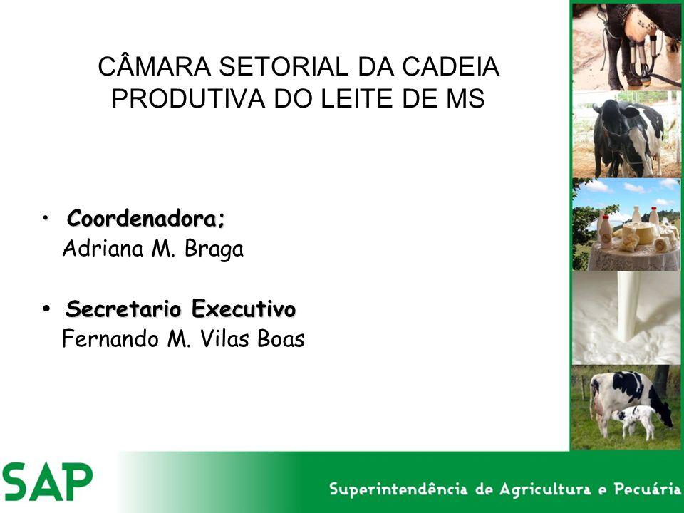 CÂMARA SETORIAL DA CADEIA PRODUTIVA DO LEITE DE MS Coordenadora;Coordenadora; Adriana M. Braga Secretario Executivo Fernando M. Vilas Boas