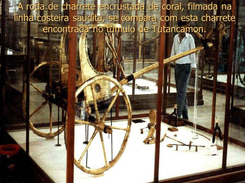 A roda de charrete encrustada de coral, filmada na linha costeira saudita, se compara com esta charrete encontrada no t ú mulo de Tutancamon.