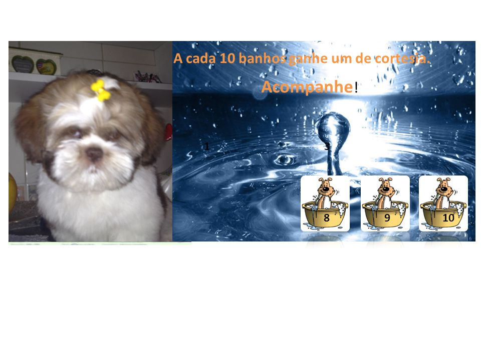A cada 10 banhos ganhe um de cortesia. Acompanhe ! 3 8 910 1