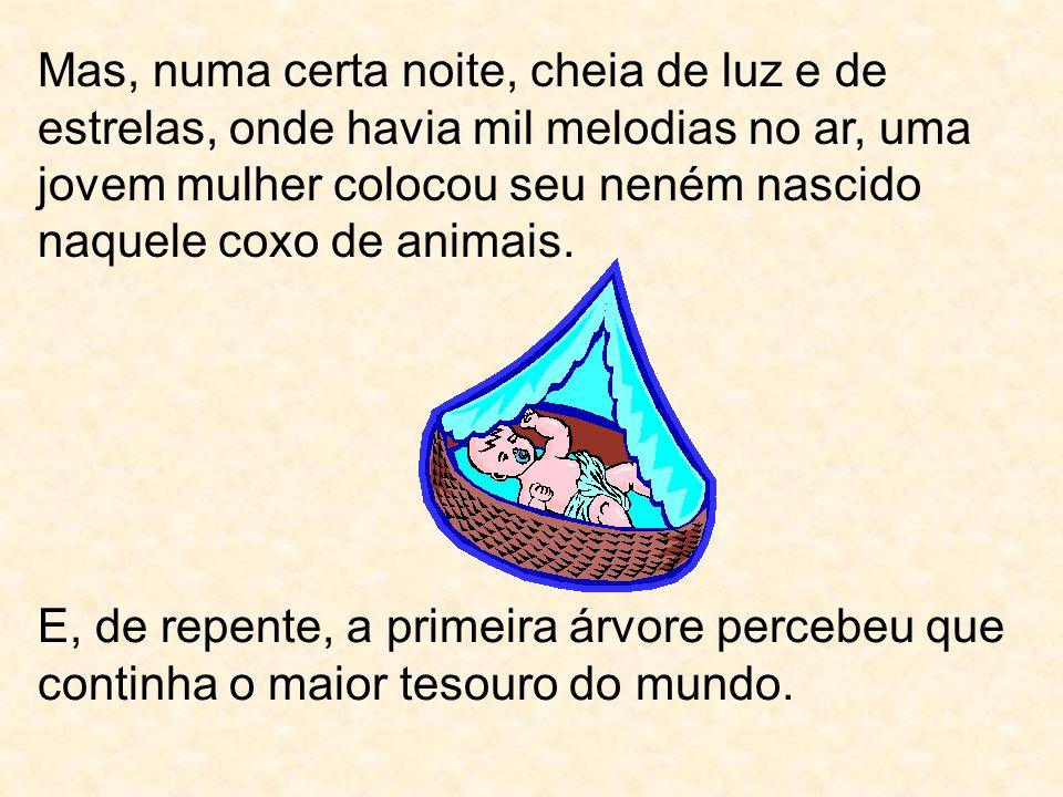 Mas, numa certa noite, cheia de luz e de estrelas, onde havia mil melodias no ar, uma jovem mulher colocou seu neném nascido naquele coxo de animais.