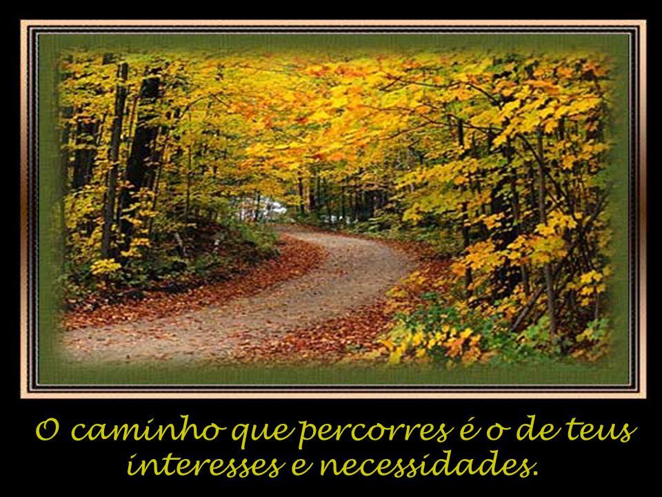 O caminho que percorres é o de teus interesses e necessidades.