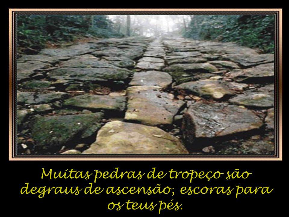Muitas pedras de tropeço são degraus de ascensão, escoras para os teus pés.