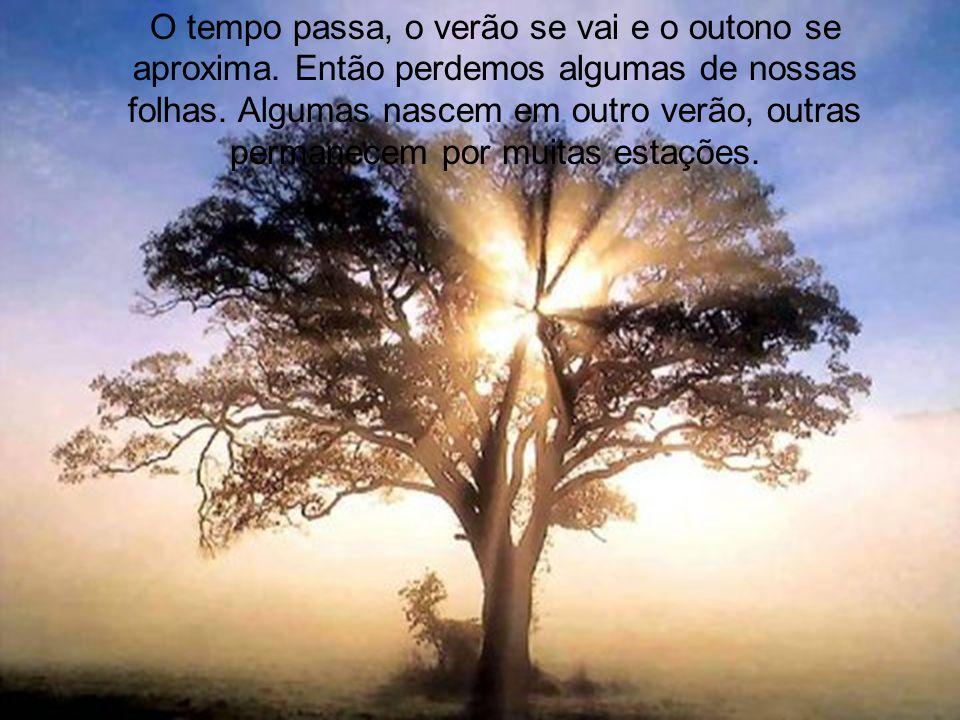 Não podemos nos esquecer dos amigos distantes. Aqueles que estão na ponta dos ramos da árvore, que, quando o vento sopra, sempre aparecem entre uma fo
