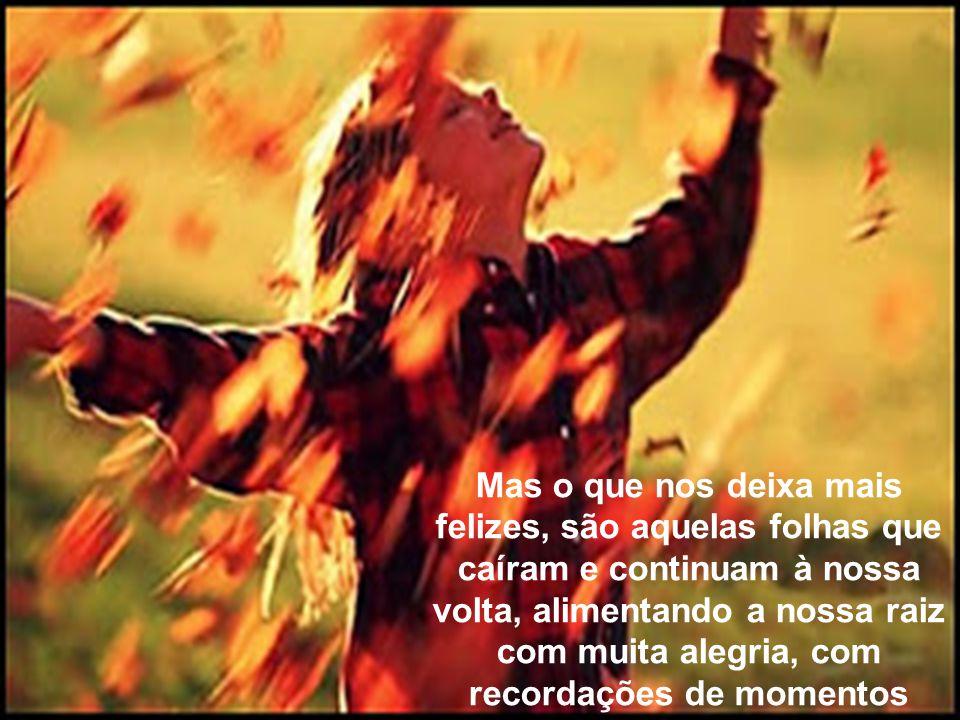 O tempo passa, o verão se vai e o outono se aproxima. Então perdemos algumas de nossas folhas. Algumas nascem em outro verão, outras permanecem por mu